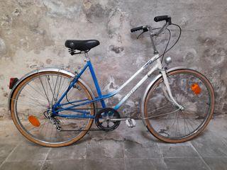 Bicicleta de Passeig
