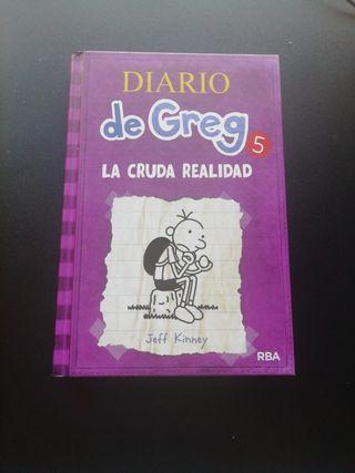 Diario de Greg 5 (La cruda realidad)