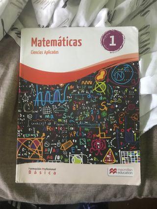 Matemáticas Formación Profesional Básica 1