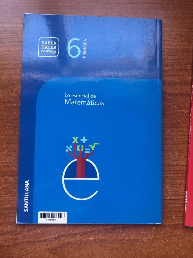 Dos Libros Santillana 6 primaria