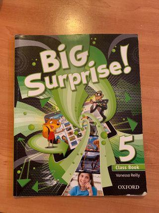 Libro Big Surprise de 5 de primaria