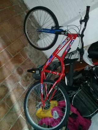 bisiklit