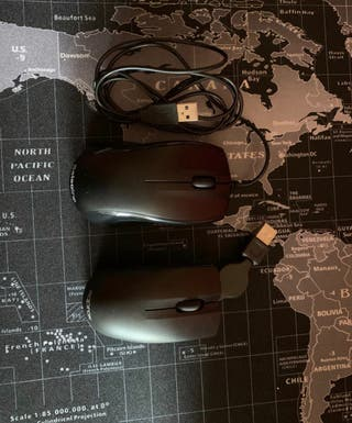 Dos ratones