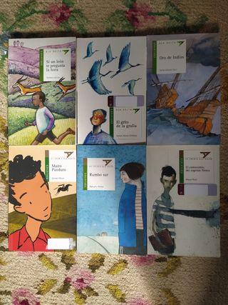 Pack 6 libros infantiles (10 años)