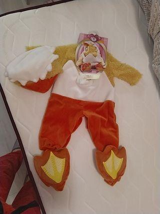 Disfraz ideal bebé (6-12meses)