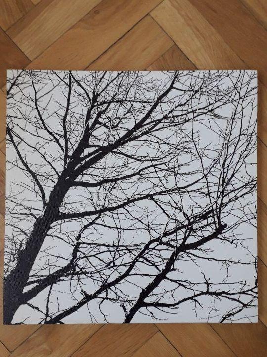 cuadro 30x30 blanco y negro