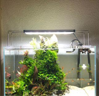 Pantalla acuario twinstar 300cc
