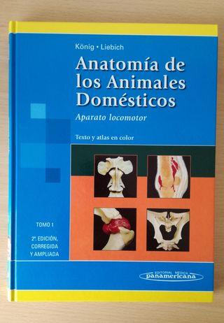 Anatomía de los animales domésticos. 2 vol.