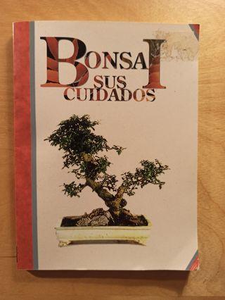 Bonsai, sus cuidados