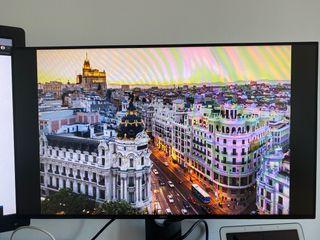 Pantalla/monitor Dell 24 pulgadas Full HD