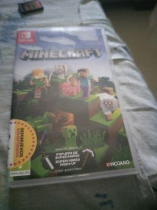 Minecraft Nintendo swhisch