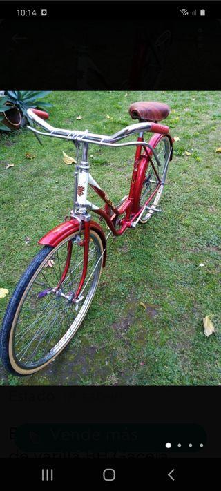 BH . bicicleta paseo