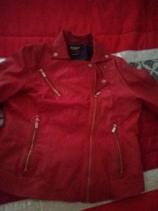 chaqueta de cuero dela tienda estrabidarius