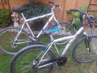 Bicicleta Giant y otra de Regalo.