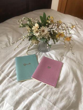 Dos cuadernos Tous
