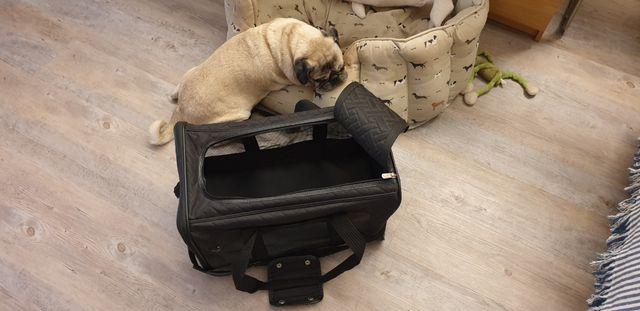 Capazo porta mascotas