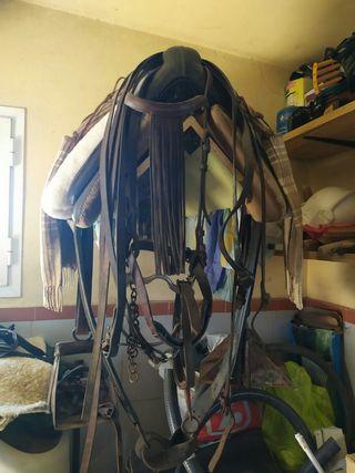 Montura de caballo. de fibra y cabezal