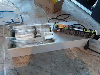 luces plantas interior y extractor con temporizado