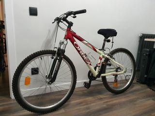 Bicicleta de montaña Orbea