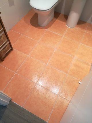 Lote de azulejos para el baño
