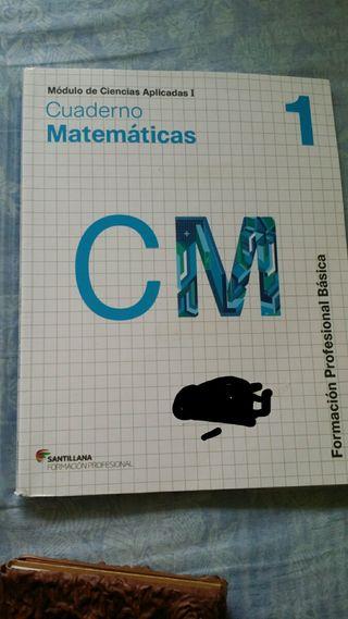 Matemáticas FPB