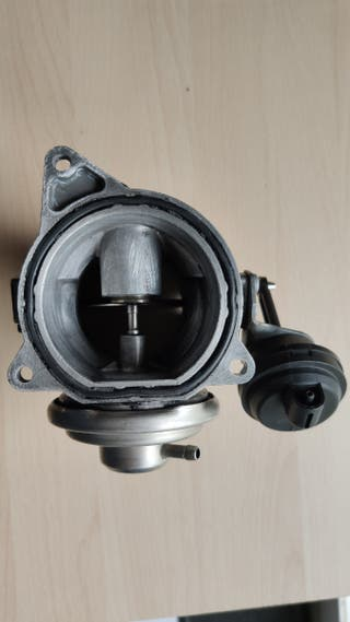 Válvula EGR para VW T5