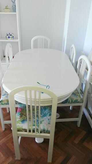 Juego 1 mesa y 6 sillas