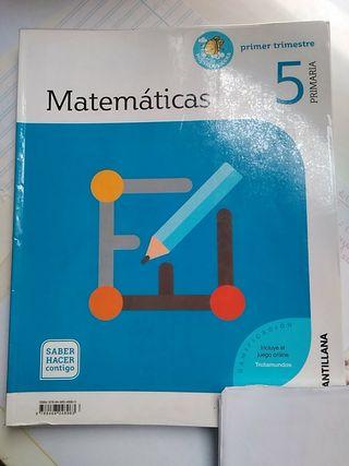 Matemáticas 5 Primaria. Ed. Santillana.