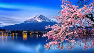 Clases particulares de japonés