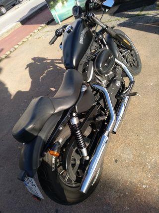 Harley Davidson 2011,iron,883.