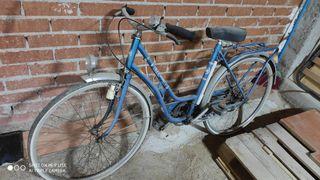 bicicleta preciosa.