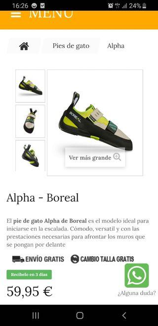 pie de gato boreal alpha