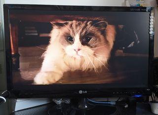 Televisión - monitor LCD LED, Full HD, 27, formato
