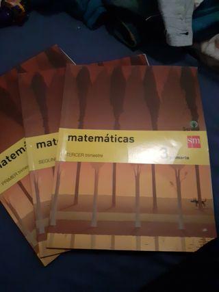 libro de matemáticas 3 primaria savia sm