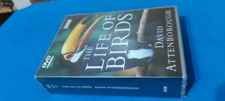 DVD The Life Of Birds ( David Attenborough )