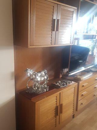 Mueble comedor TV con armarios