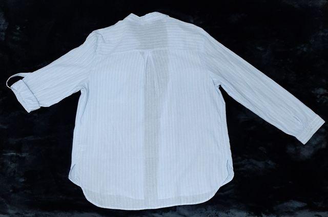 Camisa manga larga/corta rayada