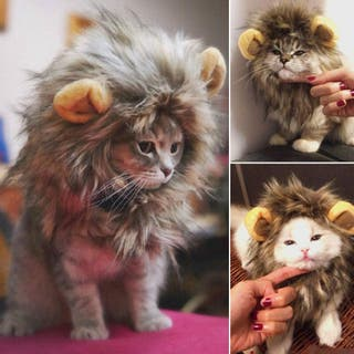 Disfraz de melena de león para gato