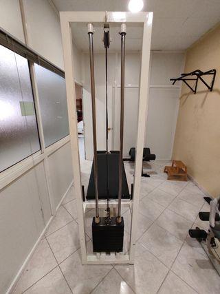 Máquina de gimnasio femoral