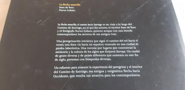 LA FLECHA AMARILLA. EL CAMINO HACIA SANTIAGO