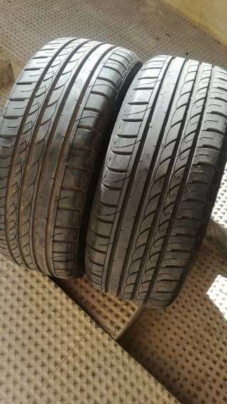 225 55 17 101W Neumáticos