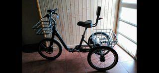 Triciclo con motor Monty