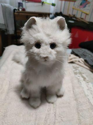 Gato robot juguete niño niña
