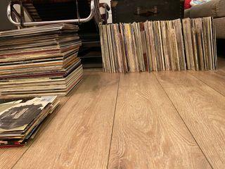 Colección de vinilos vintage (Clásico)