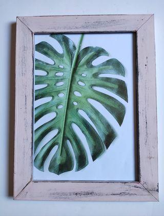 Cuadro botánico hoja