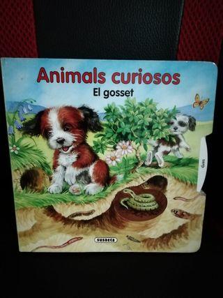 animals curiosos