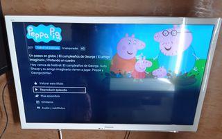 """Televisión Panasonic 43"""""""