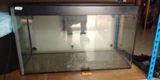 acuario 150 litros