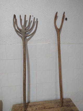 forcas antiguas