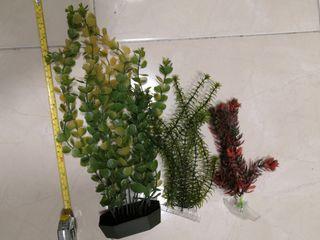 plantas acuario/pecera